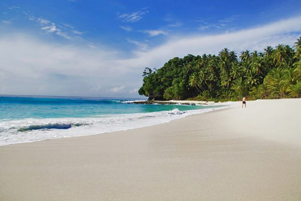 Simeulue Beach with waves en palm tress - Relaxed Surf vacation